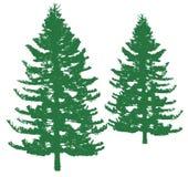 Albero di pino illustrazione di stock