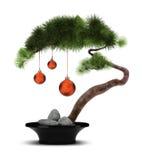 Albero di pino cinese di nuovo anno Fotografie Stock