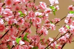 Albero di plastica di sakura del primo piano per il ramo di ontree del fondo immagine stock