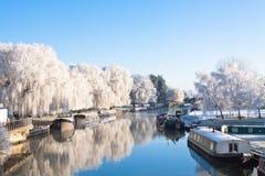 Albero di salice di inverno alla riva del fiume Fotografia Stock