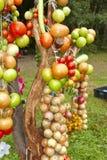 Albero di verdure Fotografia Stock Libera da Diritti