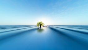 Albero distante su vasta alba di orizzonte Fotografia Stock Libera da Diritti