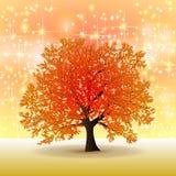 Albero dorato di autunno con le stelle Fotografia Stock