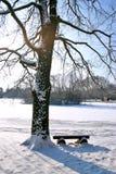 Albero e banco sotto la neve Fotografie Stock