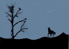Albero e cavallo nella luce della luna Fotografie Stock