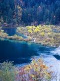 Albero e lago di autunno fotografie stock