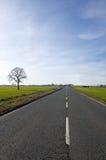 Albero e lunga strada Fotografia Stock Libera da Diritti