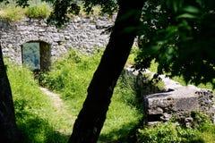 Albero e pareti e portone medievali del castello immagini stock libere da diritti