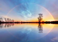 Albero e sole su alba del lago Fotografia Stock Libera da Diritti