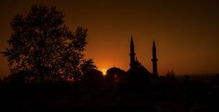 Albero e tramonto immagine stock