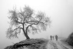 Albero e viaggiatori di inverno in nebbia Immagine Stock