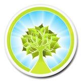 albero ecologico di disegno del distintivo Fotografia Stock