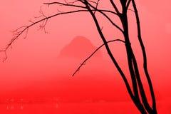 Albero fantastico Fotografia Stock