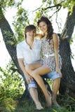 albero felice delle coppie sotto Fotografie Stock