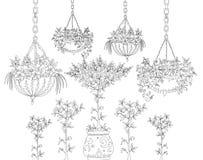 Albero, fiori ed elementi di progettazione floreale, insieme di schizzo Fotografia Stock