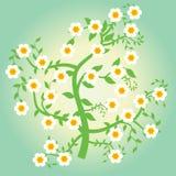 Albero floreale Immagini Stock Libere da Diritti