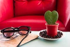 Albero a forma di del cuore Fotografie Stock