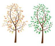 Albero frondoso di autunno di estate illustrazione vettoriale