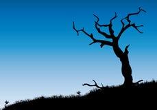 albero guasto Fotografia Stock Libera da Diritti