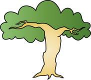 albero impressionante Fotografia Stock Libera da Diritti