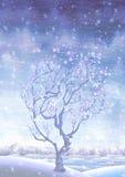 Albero innevato di fioritura di fairy-tale di inverno Immagini Stock