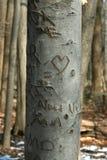 Albero intagliato dell'innamorato nel legno Fotografia Stock Libera da Diritti