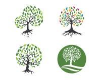 Albero Logo Template di Eco Immagine Stock Libera da Diritti
