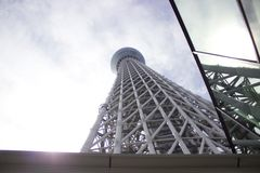 Albero moderno del cielo di Tokyo con superficie riflettente Fotografia Stock Libera da Diritti