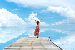 Albero nel campo Le donne sorridenti si rilassano e modo rosso d'uso del vestito che sta sul ponte di legno fotografia stock
