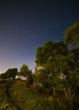 Albero nel cielo notturno fotografia stock