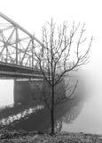 Albero nel paesaggio nebbioso del ponte Fotografie Stock Libere da Diritti