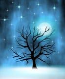 Albero nella notte Immagine Stock