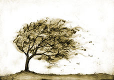 Albero nella tempesta di autunno Illustrazione di Stock