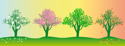 Albero nelle stagioni differenti Fotografia Stock Libera da Diritti