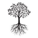 Albero nero con le radici Illustrazione di vettore illustrazione di stock