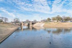 Albero nudo del parco urbano, nuvola di altocumulus, lago della fontana nel Texas, Immagini Stock Libere da Diritti