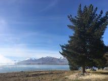 Albero oltre al lago Fotografie Stock
