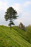 Albero, paesaggio e castello Fotografia Stock