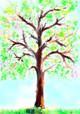 Albero in primavera Immagini Stock
