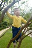 Albero rampicante del ragazzo fotografie stock