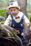 Albero rampicante del ragazzo Fotografia Stock Libera da Diritti