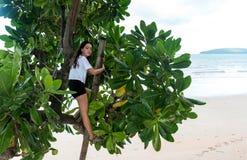 Albero rampicante teenager alla spiaggia immagini stock libere da diritti