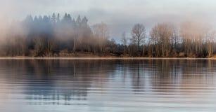 Foresta nebbiosa attraverso il fiume fotografia stock