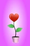 Albero rosso del cuore Fotografia Stock