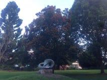 Albero rosso in parco Fotografia Stock Libera da Diritti