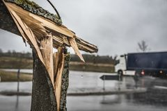 Albero rotto sulla via Fotografia Stock Libera da Diritti