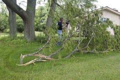 Albero scolato motosega dell'uomo di danni provocati dal maltempo del vento di tornado Fotografie Stock