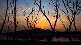 Albero secco accanto al lago e montagna con il cielo di tramonto Fotografia Stock