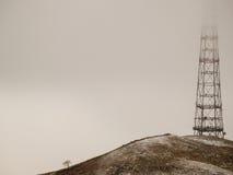 Albero solo e vista della torretta della TV Fotografia Stock