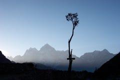 Albero solo in Himalaya, Nepal Fotografia Stock Libera da Diritti